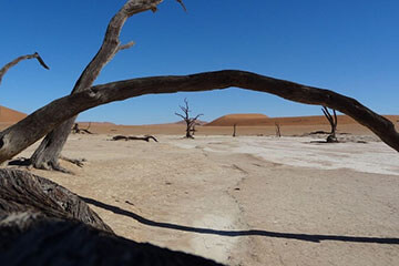 Namibia Safari Tour