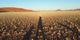 Namibian Safari Adventures